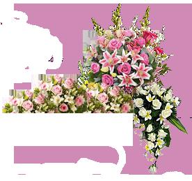 Floraria Prima Donna Bacau
